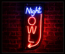 Night Owl Neon Sign